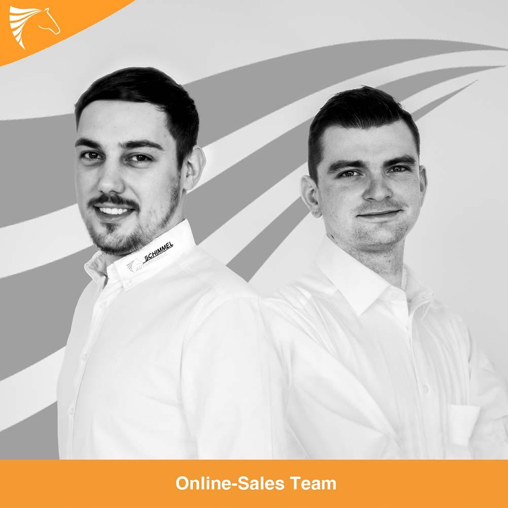 Online-Sales Team
